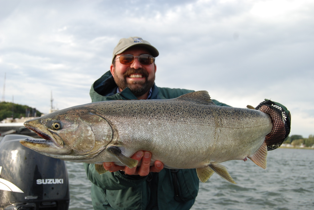 Manistee River Salmon Fishing - Manistee Lake - Michigan