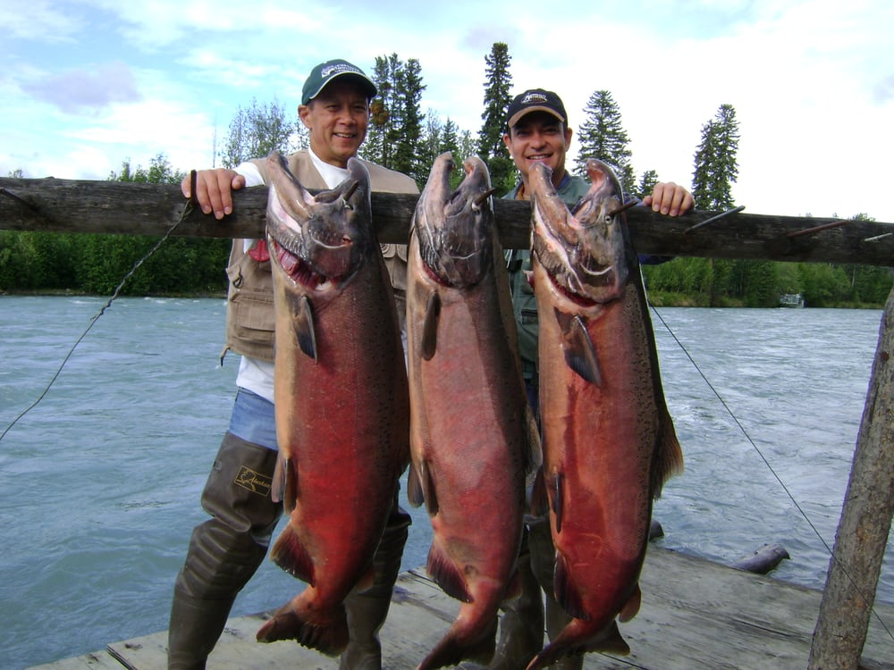 Alaska King Salmon - Klutina River - Betts Guide Service