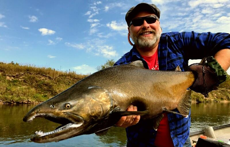 Manistee River Salmon Fishing - Tippy Dam Michigan