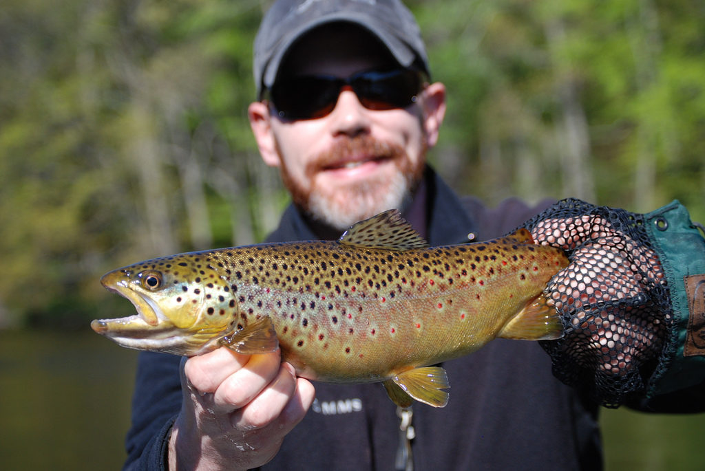 Michigan Trout Fishing Reports