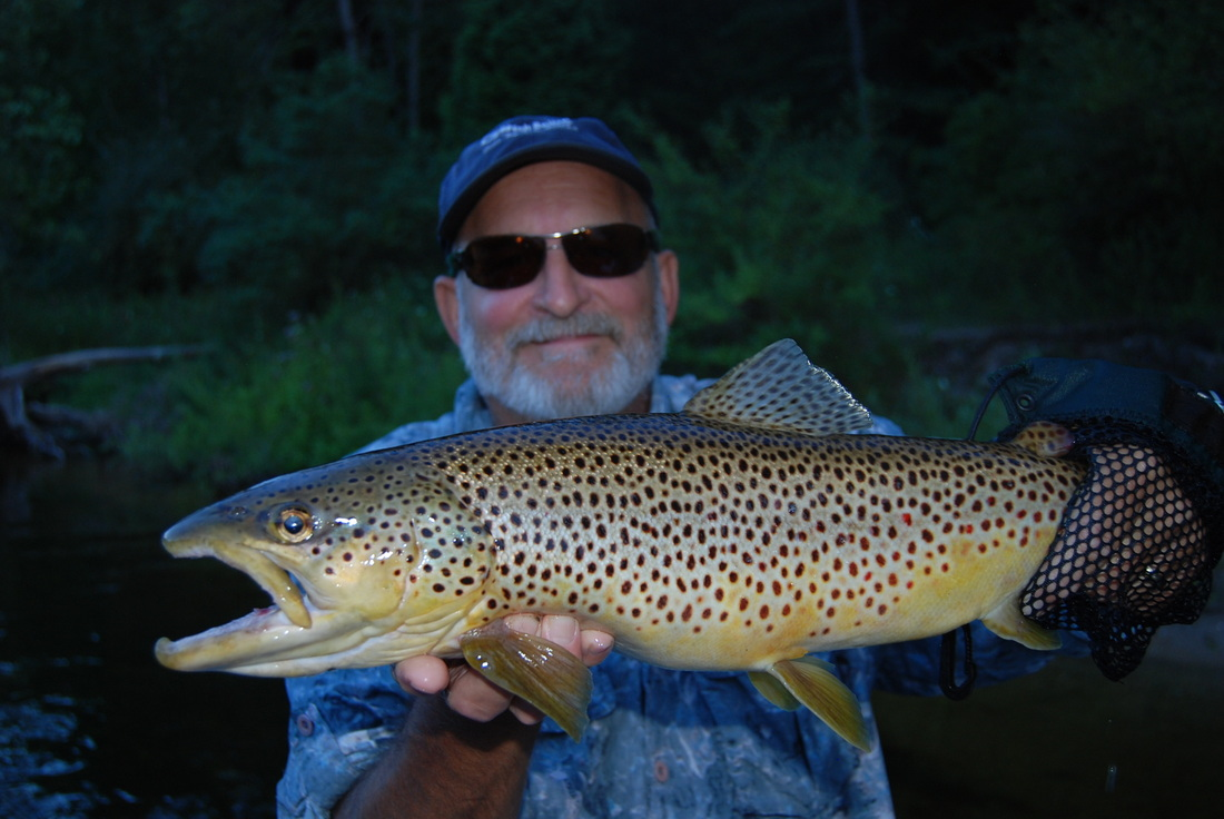 AuSable River Trout Fishing | Au Sable Steelhead Reports