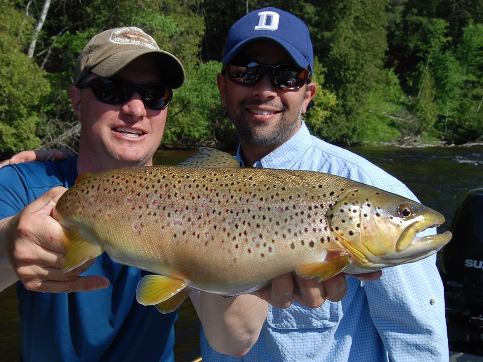 Michigan Trout Fishing _ Sucker Spawn Trout