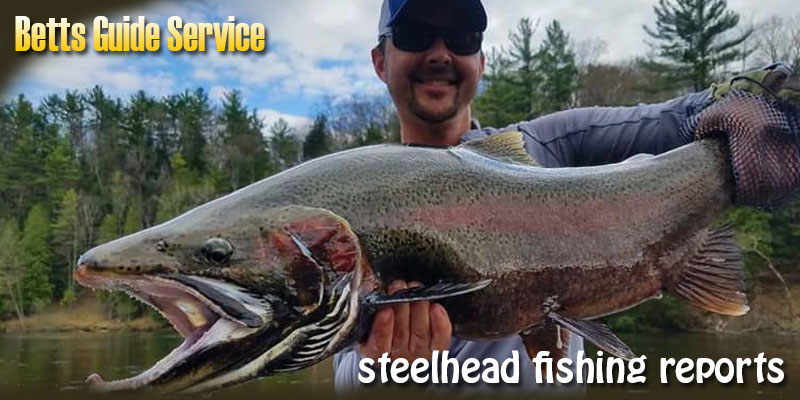 6 Useful Tips for Catching a Steelhead Fish
